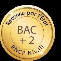 BAC + 3 RNCP NIVEAU III