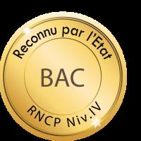 BAC RNCP NIVEAU IV