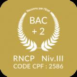 Icon-AD-NIV