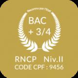 Icon-CDI-NIV
